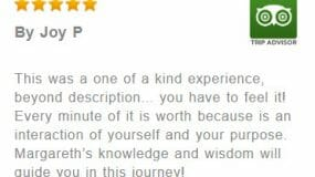 A five star review of Sedona Vortex Retreats on Trip Advisor